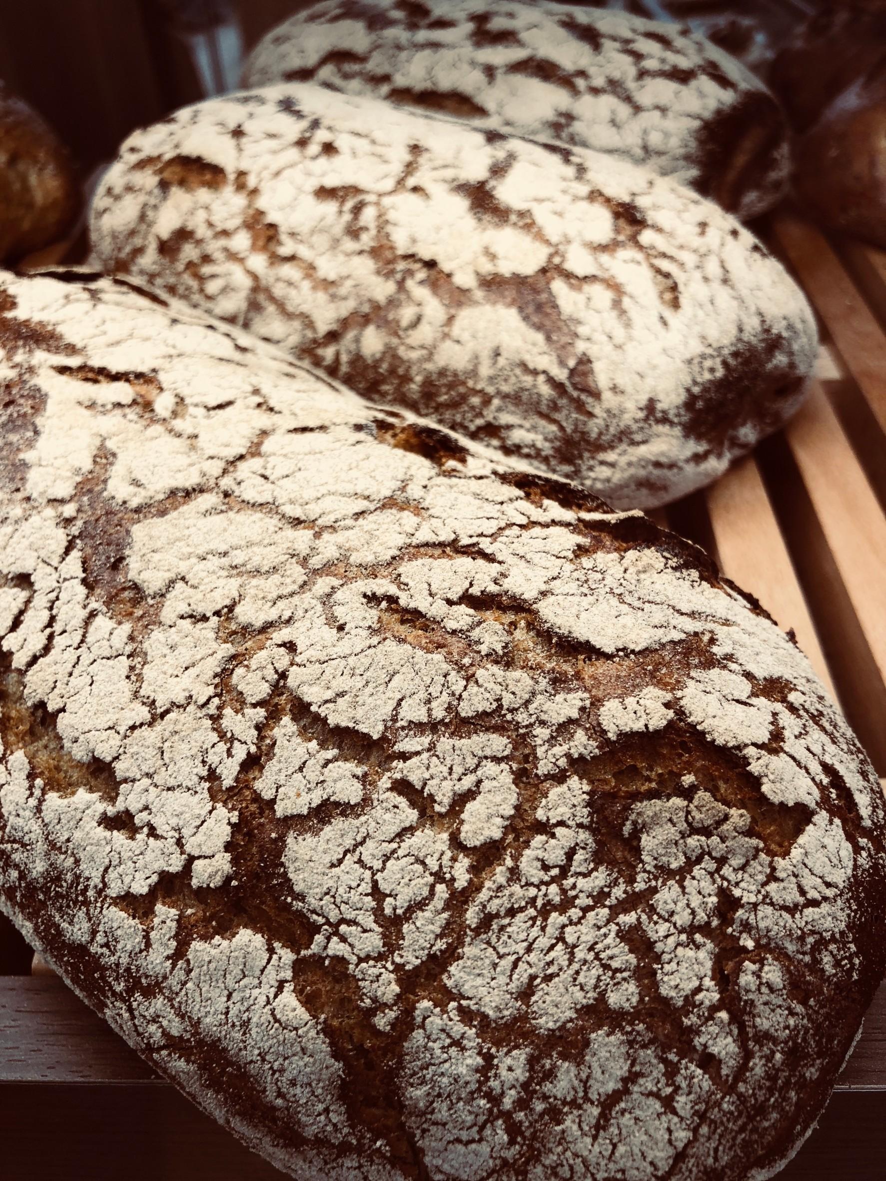 パンの価値11 ベッカライ テルタケ